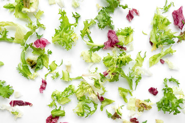 Salad mix background. Different kinds of lettuce leaves on white background. Healthy ingredient for vegan food.