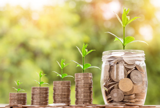 step of coins stacks with tree growing on top and coins in glass jar on table, nature background, money, saving and investment concept, over sun flare silhouette tone.