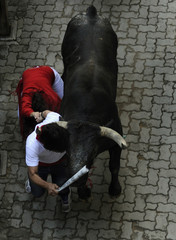 Runners hold hands beside a Miura fighting bull at the San Fermin festival in Pamplona