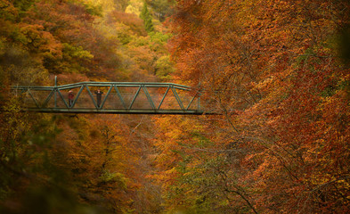 People stop on a bridge over the river Garry to view the autumn scene near Killiecrankie, Scotland