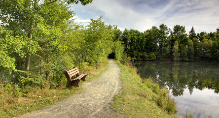 bench and trail at park with lake