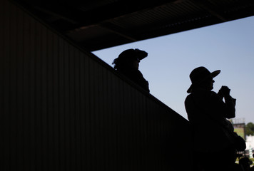Race fans watch preliminary races before the 137th running of the Preakness Stakes at Pimlico Race Course in Baltimore