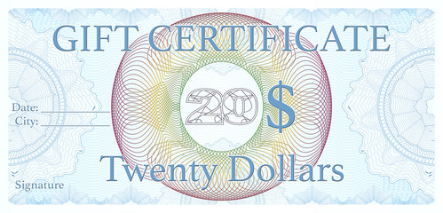 Professional 20$ gift certificate, designed as an official check, voucher.