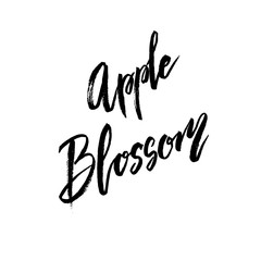Apple blossom spring concept lettering