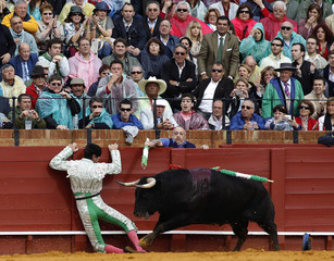 Spanish banderillero Jose M. Fernandez 'Alcalareno' falls over the barrier during a bullfight in The Maestranza bullring in Seville