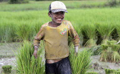 Thy Channa, 13, smiles as he works on the rice field after his school vacation, in Kampong Speu province, west of Phnom Penh