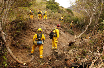 Captain Ben Cowles and other firefighters from El Dorado Hills create fire breaks in rugged terrain at Garrapata State Park during the Soberanes Fire north of Big Sur, California