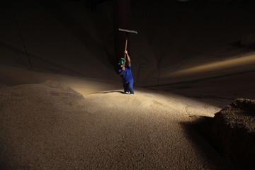A man works in a mountain of soybeans stocked in the city of Sorriso