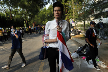 An anti-government protester wears national colours as he joins others clashing with police near the Government House in Bangkok