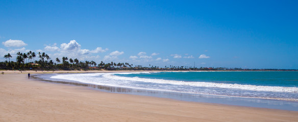 Panorama of a tropical beach at Pernambuco, Brazil