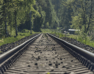 Wall Murals Railroad Railway track in spring fog sunny day