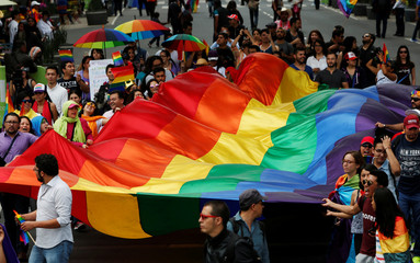The LGBTI community wave a rainbow flag during a march in support of gay marriage, sexual and gender diversity in Mexico City