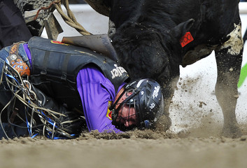 Thomson gets hit in the head by the bull Slash in the bull riding event during the Calgary Stampede rodeo finals in Calgary.