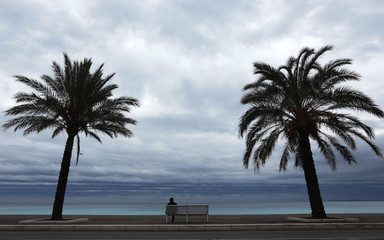 Palm trees frame a man who sits on a bench on a winter's day along the Promenade Des Anglais in Nice