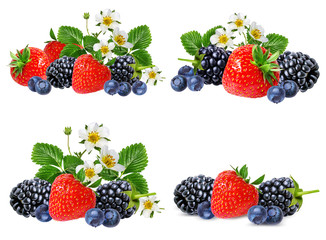 strawberry and blackberry  isolated on white