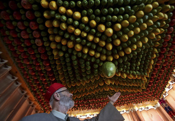 A member of the Samaritan sect decorates a traditional hut known as a sukkah with fruits and vegetables on Mount Gerizim, on the outskirts of the West Bank City of Nablus