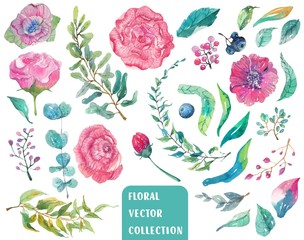 Watercolor beautiful floral collection