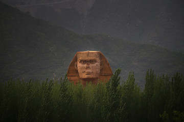 The head of a full-scale replica of the Sphinx, which is part of an unfinished theme park that will also accommodate the production of movies, television shows and animation, is seen behind trees on the outskirts of Shijiazhuang