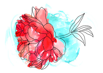 Vector and watercolor red peony with teal texture