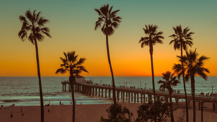 Palm trees and Pier on Manhattan Beach at sunset in California, Los Angeles, USA.