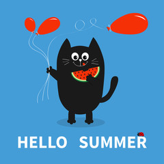 Hello summer. Black cat holding red balloon, watermelon. Ladybug insect. Cute cartoon character. Greeting card. Funny pet animal collection. Flat design. Blue background.