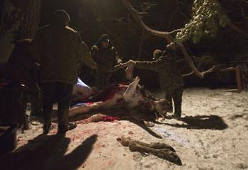 Belarussian gamekeepers skin elks killed by Russian hunters in a forest near the village of Ratsevo