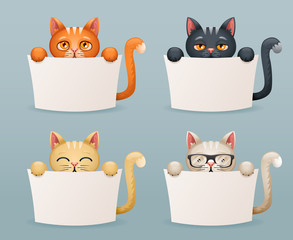 Beggar cats animals need help paws hold blank paper cartoon 3d characters set vector illustration