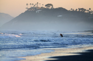 A surfer wets his head as he wades into the ocean for an early morning surf in Cardiff, California