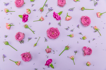Top view of beautiful decorative pattern from pink roses and buds with small blue flowers