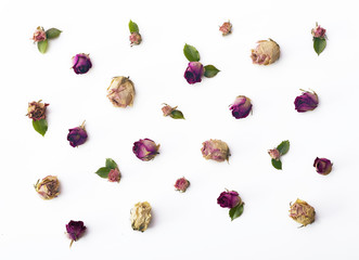 Roses flat lay background