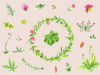 Watercolor set of leaves, floral elements and flowers. Hand drawn collection
