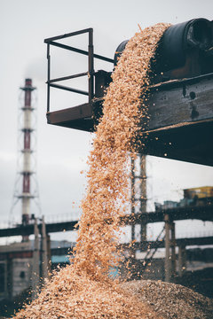 raw material at paper mill factory