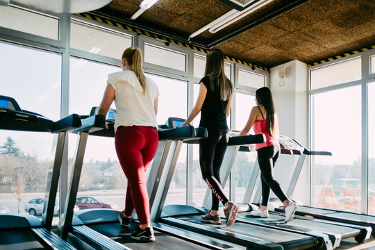 Spending great time at gym. Beautiful young cheerful girls in sportswear exercising on treadmill at gym
