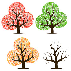 Four trees with green, red, yellow leaves and without leaves. Vector illustration isolated on a white background