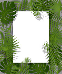 White paper on green summer tropical background with exotic palm leaves and plant. Vector floral design