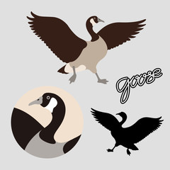 Canadian goose vector illustration style Flat black silhouette set