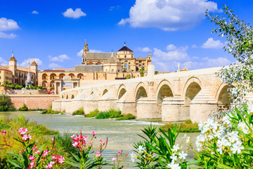 Cordoba, Spain. The Roman Bridge and Mosque (Cathedral) on the Guadalquivir River. Wall mural