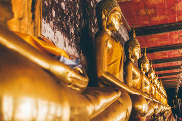 golden buddhas lined up in lotus pose in temple in bangkok