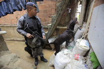 A policeman looks at a sniffer dog searching for arms and drugs in Rocinha Slum during an operation to find a man, who killed a policeman during a shootout in Rio de Janeiro