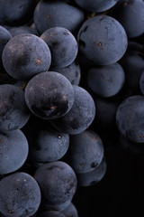 Close up, berries of dark bunch of grape in low light isolated on black background