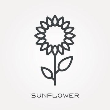 Line icon sunflower