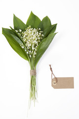 the Lilly of the valley flowers and leaves bouquet on white background