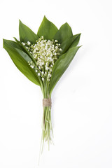 Poster de jardin Muguet de mai the Lilly of the valley flowers and leaves bouquet isolated on a white background. Selective focus