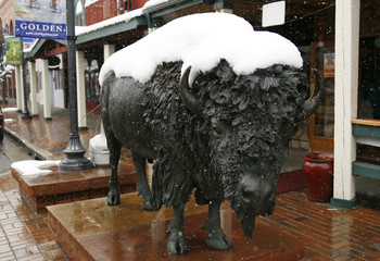 A bison statue is covered with fresh snow in downtown Golden, Colorado