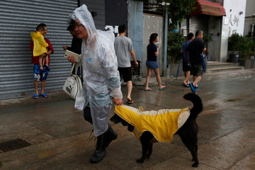 A woman and her dog dress in raincoats as they walk while Typhoon Haima approaches in Hong Kong