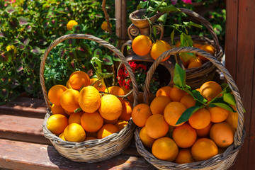 Oranges in baskets on the bench