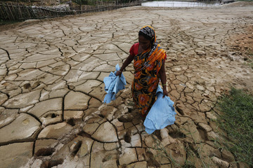 A woman carries tannery waste as she walks through a dried pond at Hazaribagh area in Dhaka