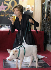 British actress Emma Thompson drinks a pint as she poses with Monkey the Pig after being honored for her motion picture career with a star on the Hollywood Walk of Fame, in Hollywood