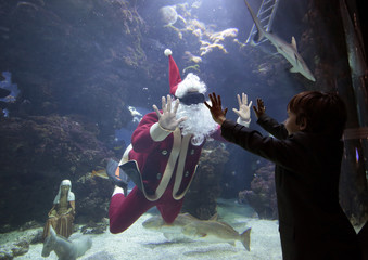 A young boy waves to French diver Pierre Frolla, a four-time apnea diving world champion, dressed as a Santa Claus as he swims with fish in an aquarium of the Oceanic Museum of Monaco
