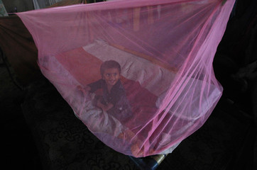 Three-month-old girl Shoni, sits under a mosquito net while taking shelter with her family under a bridge in Karachi